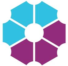 Digital Leadership Institute